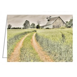 Farm on Diamondview Road -...