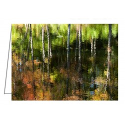 Beaver Pond Reflections - 1...
