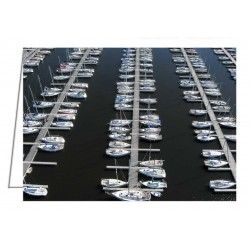 Lots of Yachts, Nepean...