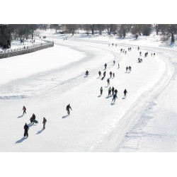 Skating on Dow's Lake (Rideau Canal)